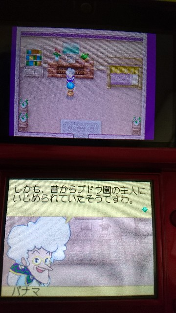 f:id:kiribosisama:20190221162545j:image