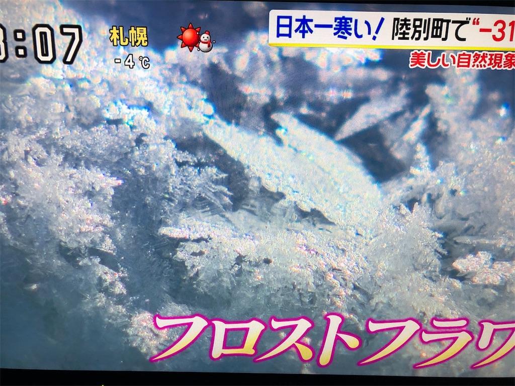 f:id:kirimura:20190211192728j:image