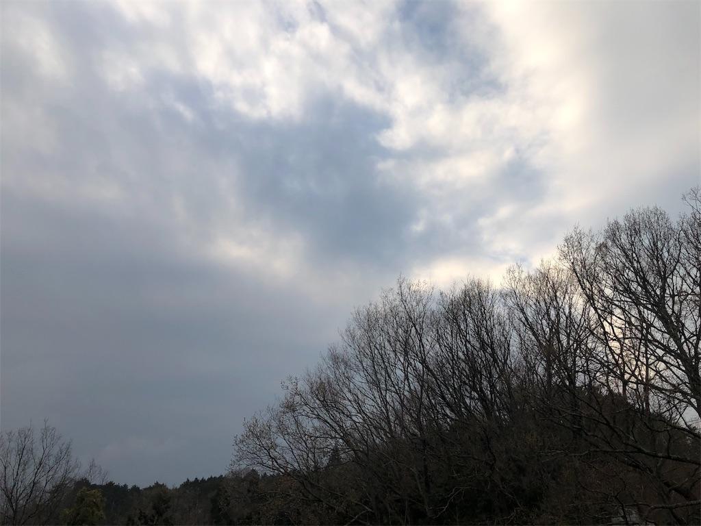 f:id:kirimura:20190330175833j:image