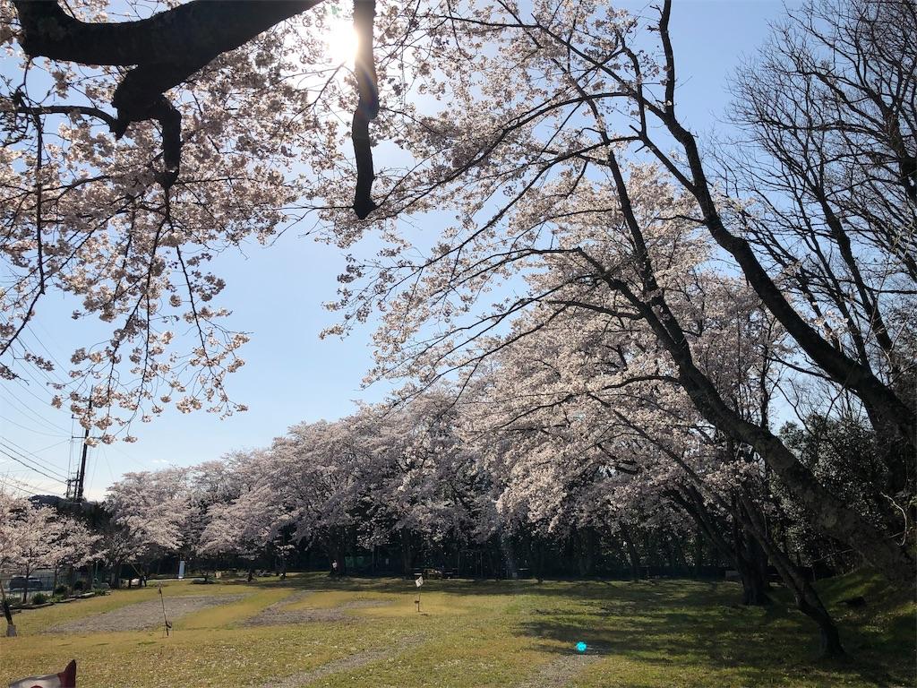 f:id:kirimura:20190409204729j:image