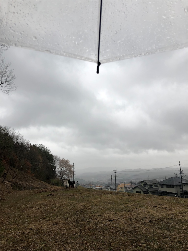 f:id:kirimura:20190415203741j:image