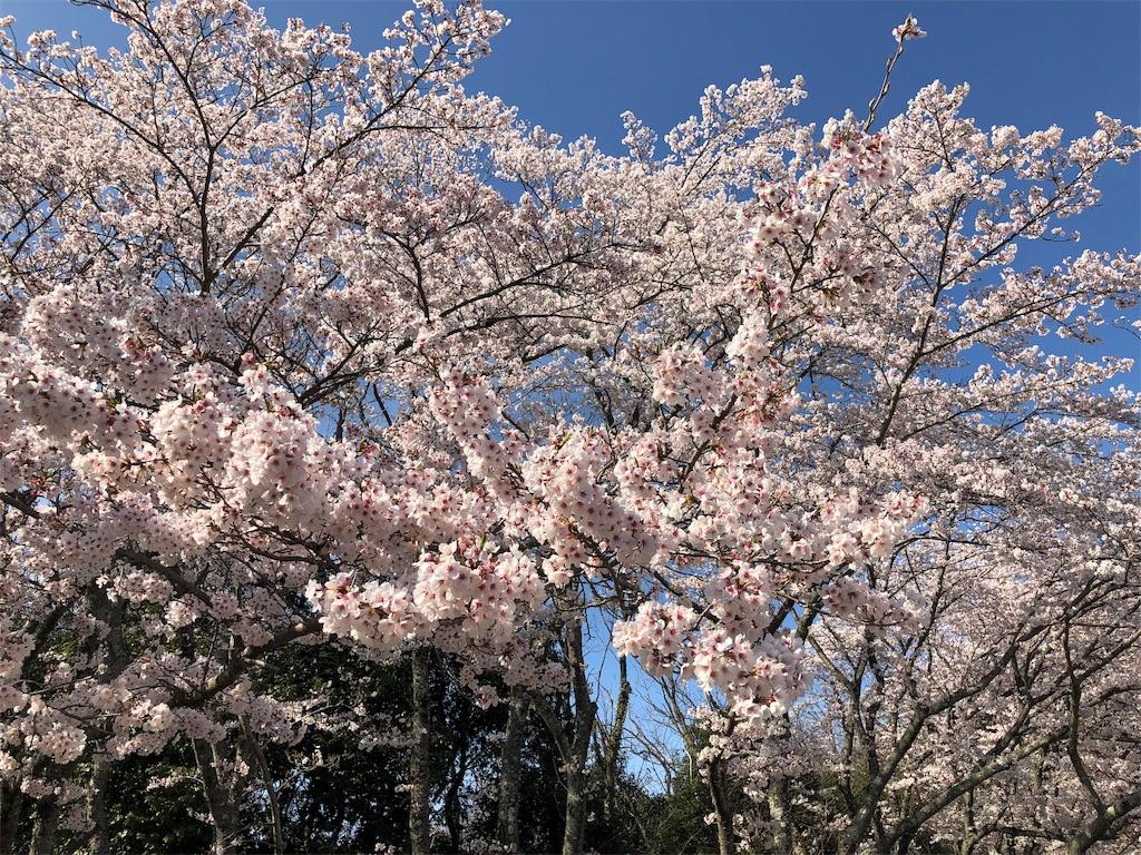 f:id:kirimura:20190415203914j:image