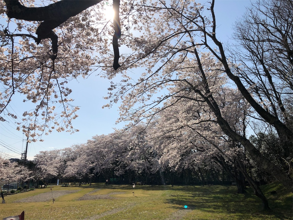 f:id:kirimura:20190415203922j:image