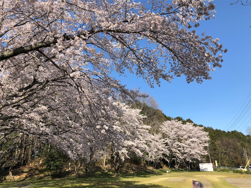 f:id:kirimura:20190415203926j:image