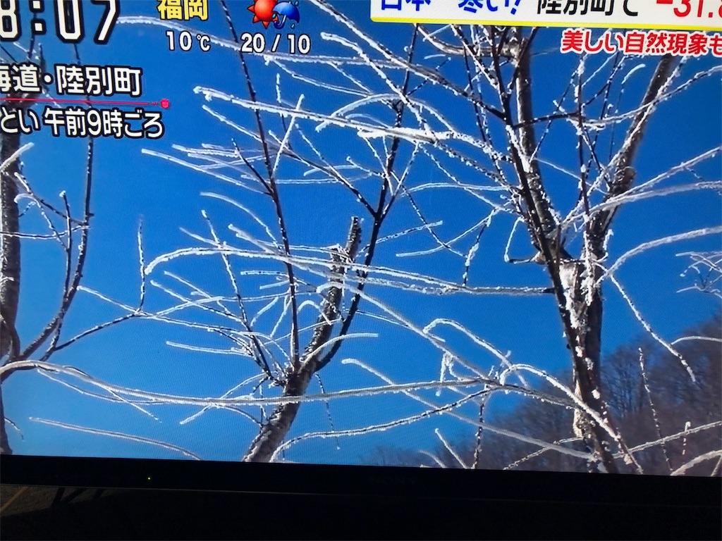 f:id:kirimura:20190427185353j:image