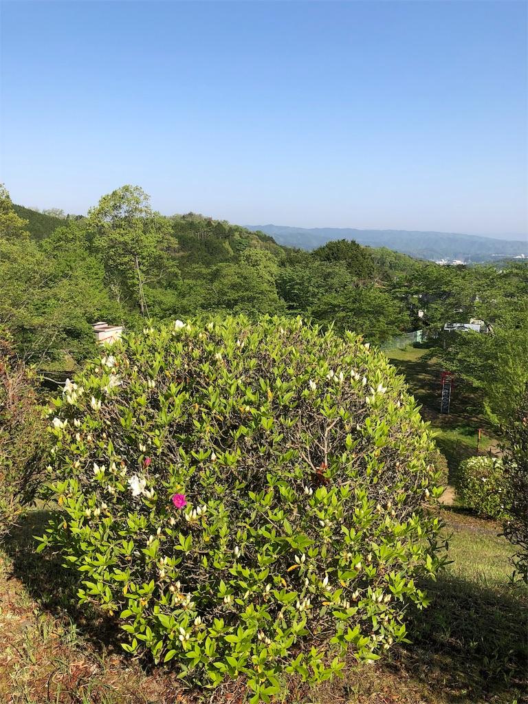 f:id:kirimura:20190505184748j:image