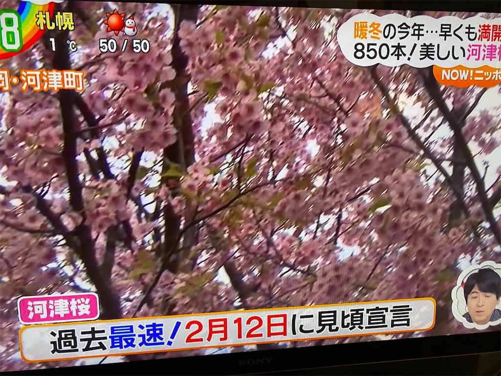 f:id:kirimura:20200306190507j:image