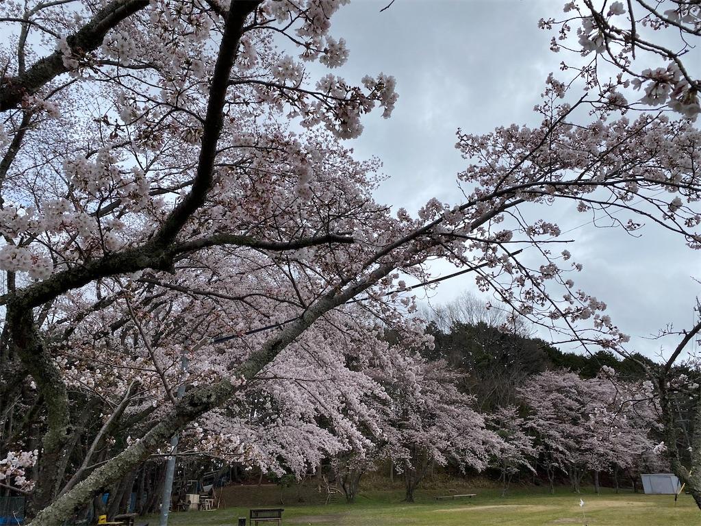 f:id:kirimura:20200401110307j:image
