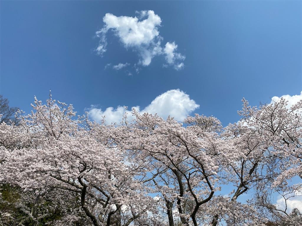 f:id:kirimura:20200406194828j:image
