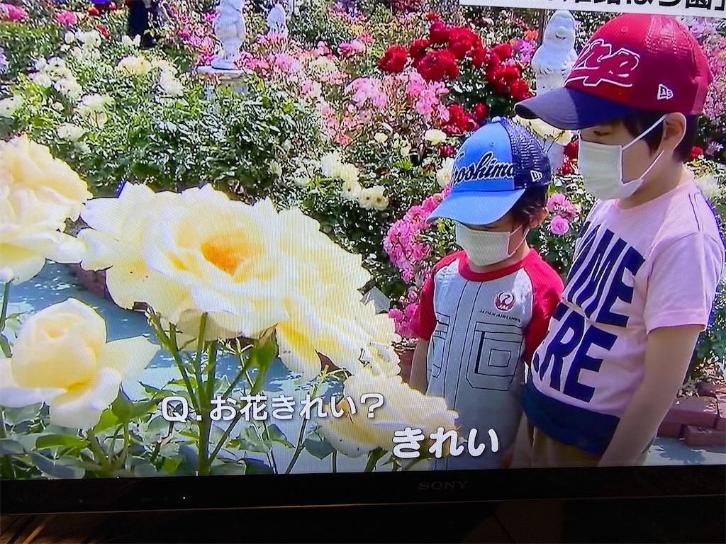 f:id:kirimura:20200531101553j:image