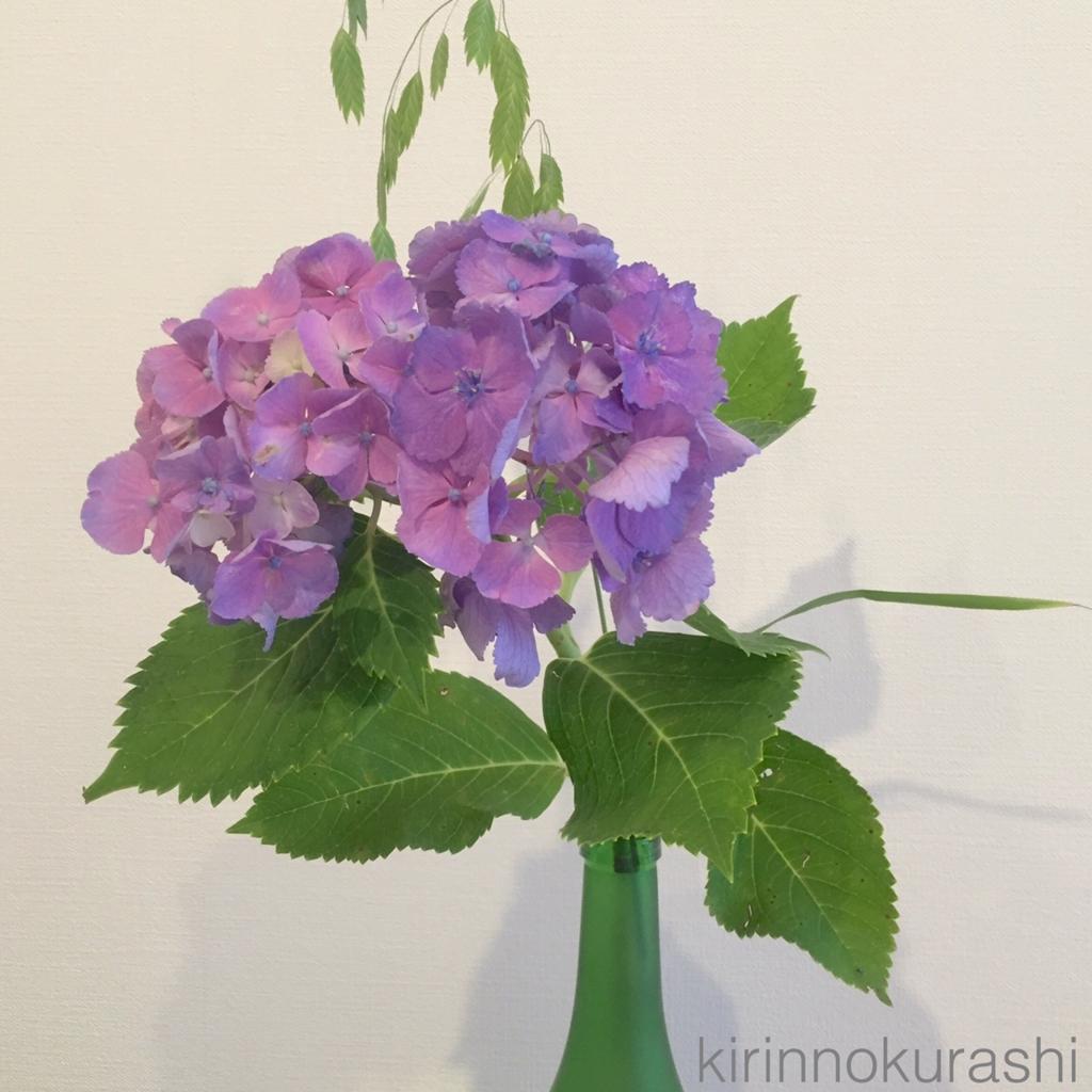 f:id:kirinnokurashi:20160619175930j:plain