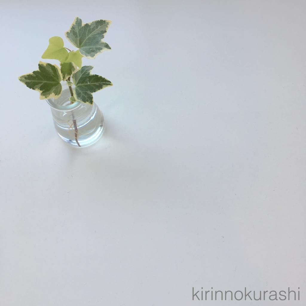f:id:kirinnokurashi:20170424080753j:plain