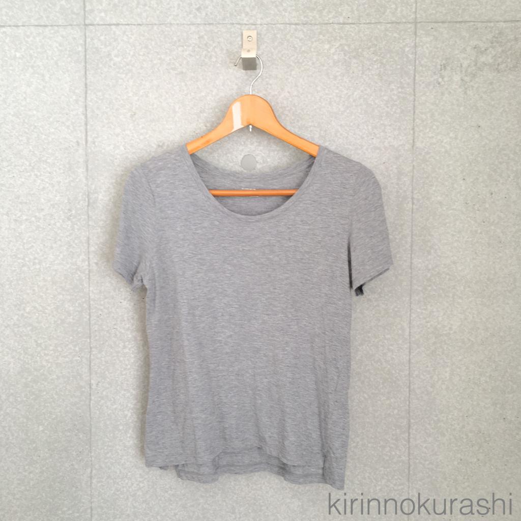 f:id:kirinnokurashi:20180603144755j:plain