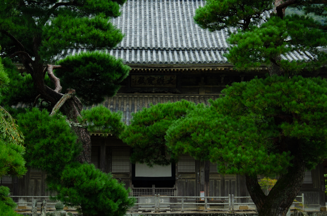 f:id:kirishimaonsen:20200522234330j:plain