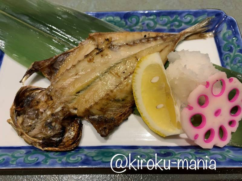 f:id:kiroku-mania:20200504180403j:plain