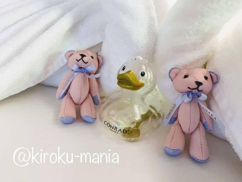 f:id:kiroku-mania:20200506122547j:plain