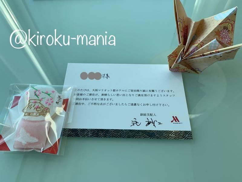 f:id:kiroku-mania:20200705061157j:plain