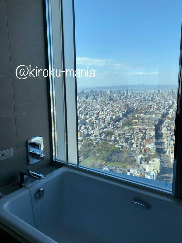 f:id:kiroku-mania:20200705061230j:plain