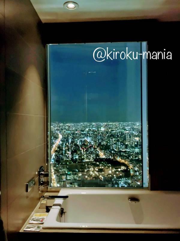 f:id:kiroku-mania:20200705061411j:plain