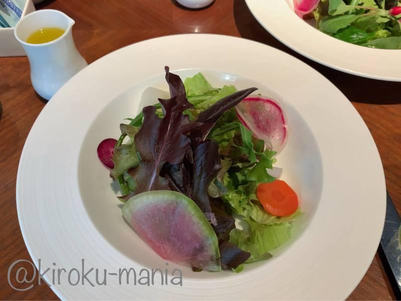 f:id:kiroku-mania:20200717210040j:plain