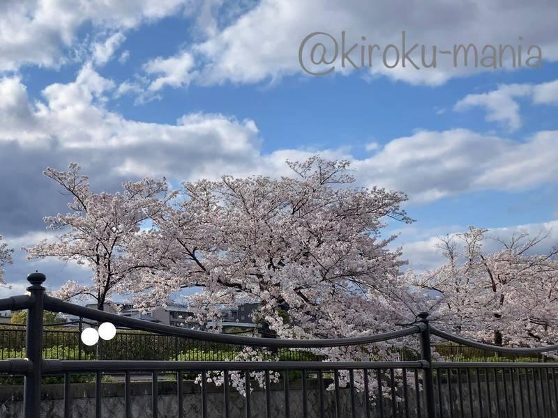 f:id:kiroku-mania:20200717210329j:plain