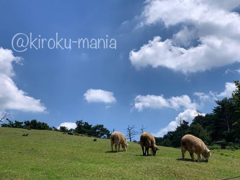 f:id:kiroku-mania:20201008185956j:plain