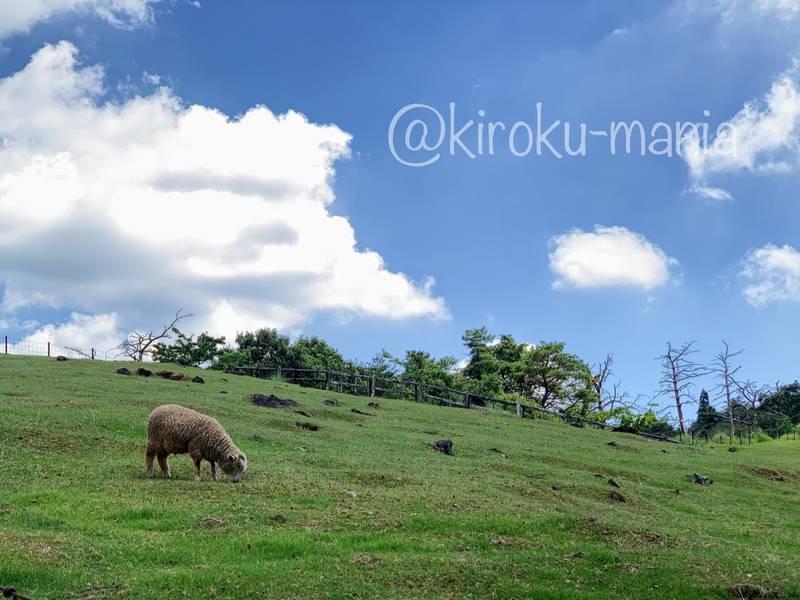 f:id:kiroku-mania:20201008190007j:plain