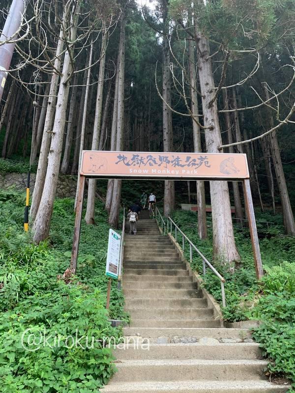 f:id:kiroku-mania:20201017183103j:plain
