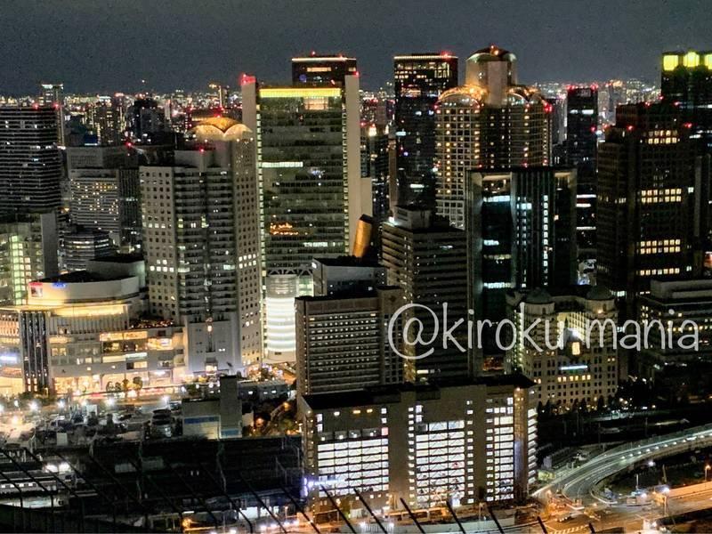 f:id:kiroku-mania:20201117211336j:plain