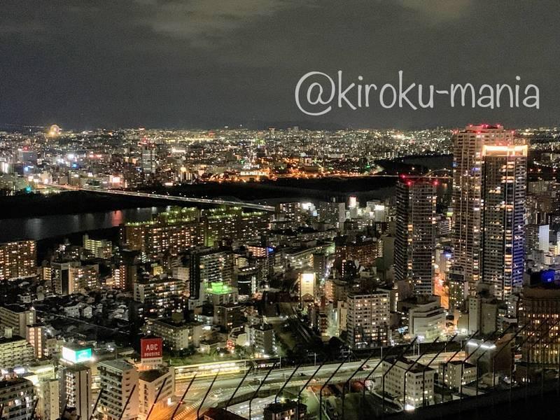 f:id:kiroku-mania:20201117211353j:plain