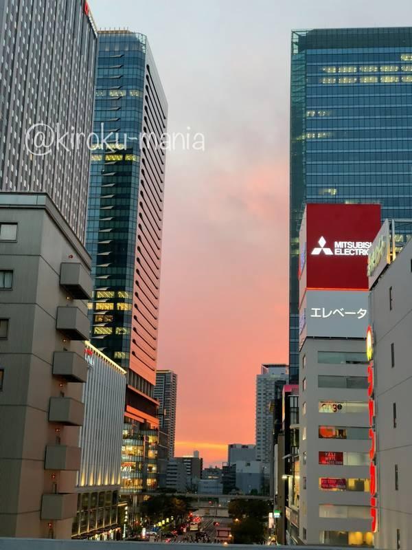 f:id:kiroku-mania:20201126210827j:plain