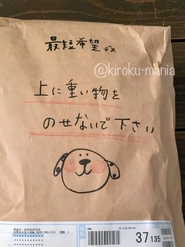 f:id:kiroku-mania:20201128120344j:plain