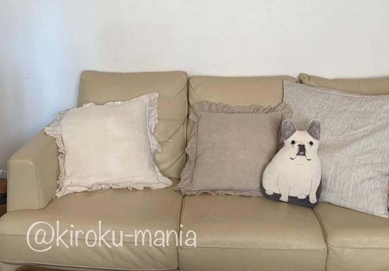 f:id:kiroku-mania:20201128120403j:plain