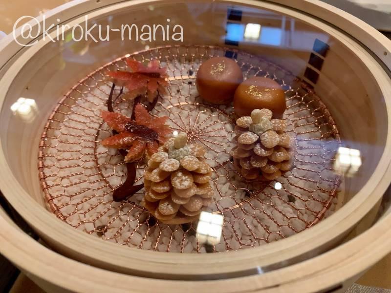 f:id:kiroku-mania:20210109090232j:plain