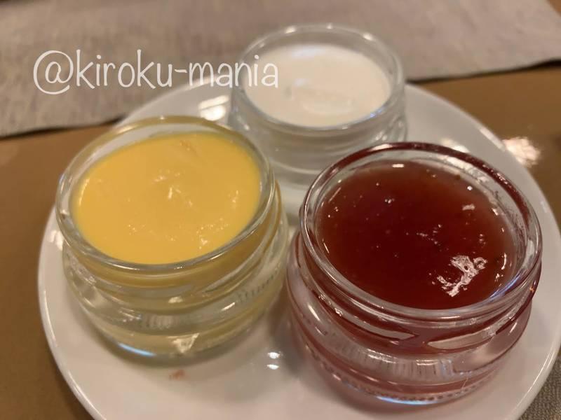 f:id:kiroku-mania:20210109090347j:plain
