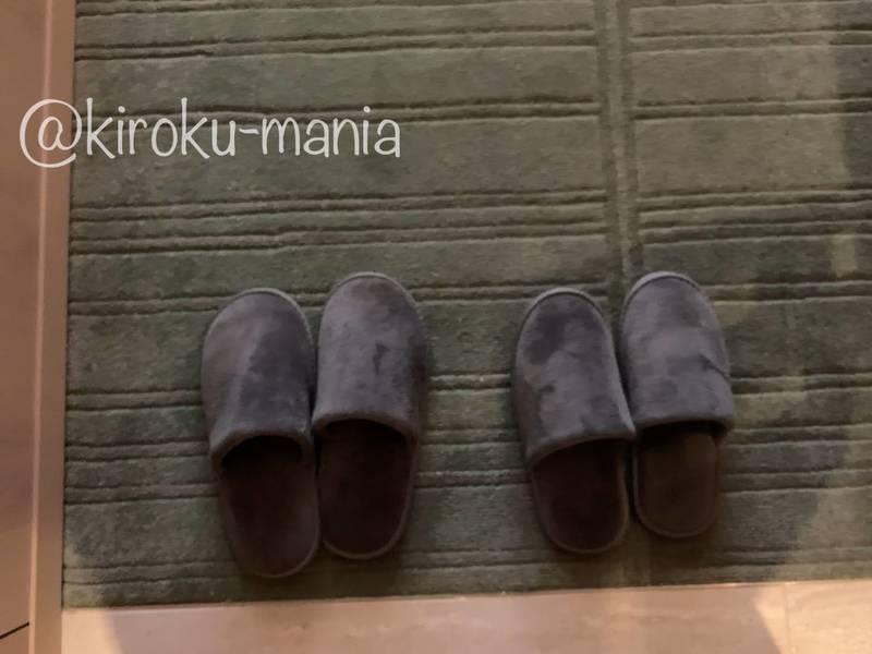 f:id:kiroku-mania:20210109093204j:plain