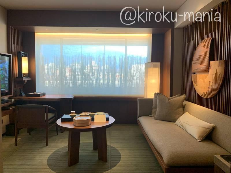 f:id:kiroku-mania:20210109093230j:plain