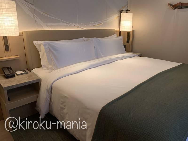 f:id:kiroku-mania:20210109093300j:plain
