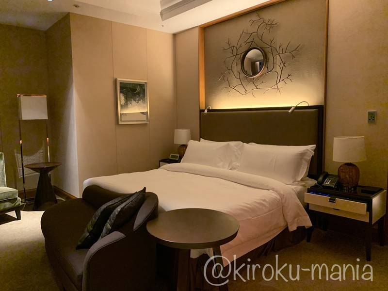 f:id:kiroku-mania:20210114215126j:plain