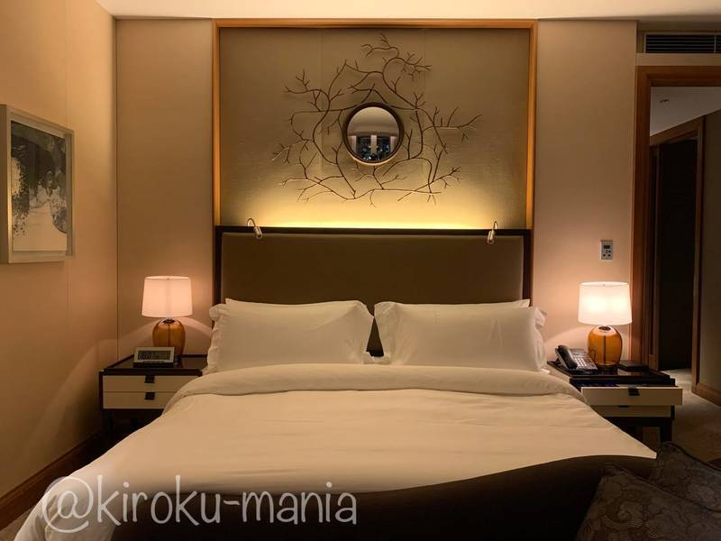 f:id:kiroku-mania:20210114215140j:plain