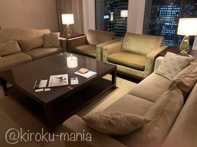 f:id:kiroku-mania:20210114215144j:plain