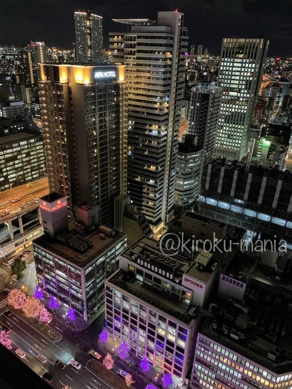 f:id:kiroku-mania:20210114215200j:plain
