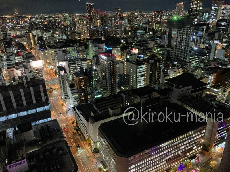 f:id:kiroku-mania:20210114215217j:plain