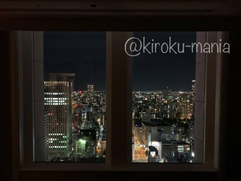 f:id:kiroku-mania:20210114215223j:plain