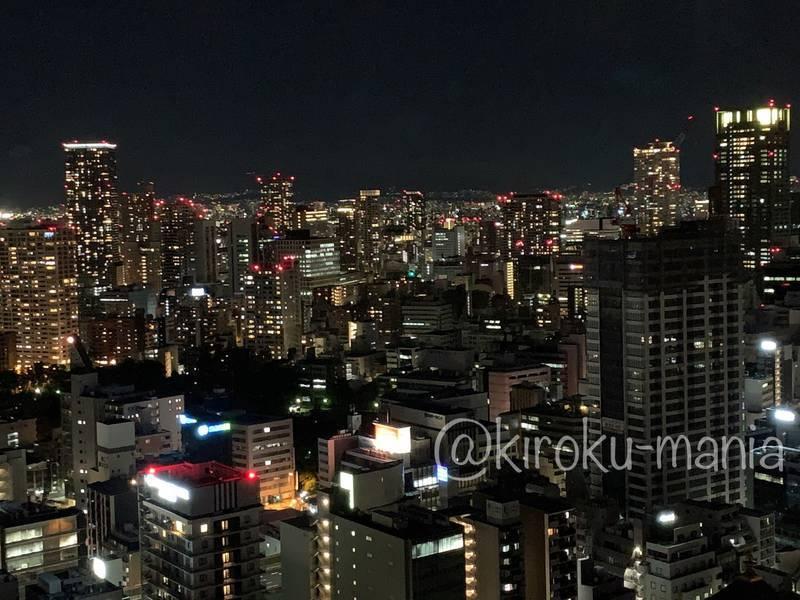 f:id:kiroku-mania:20210114215229j:plain