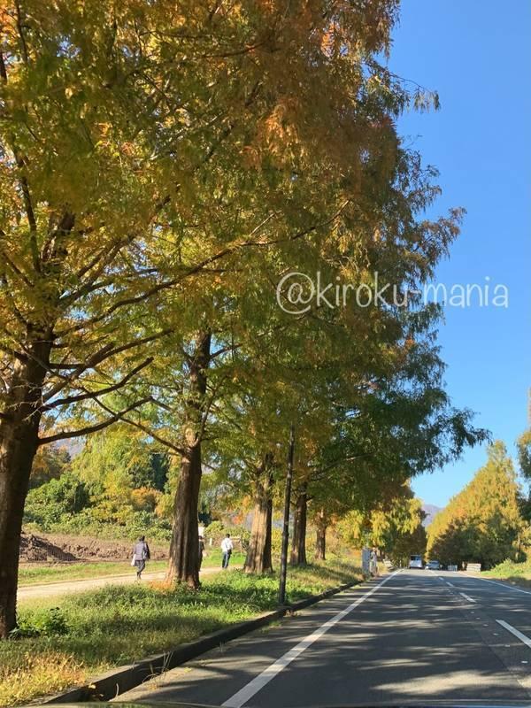 f:id:kiroku-mania:20210117210406j:plain