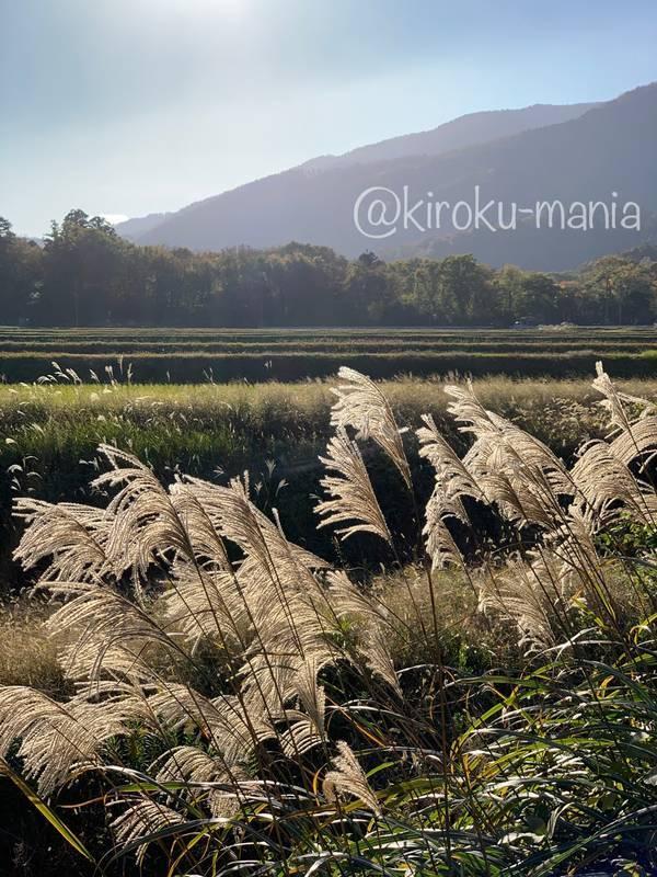 f:id:kiroku-mania:20210117210432j:plain
