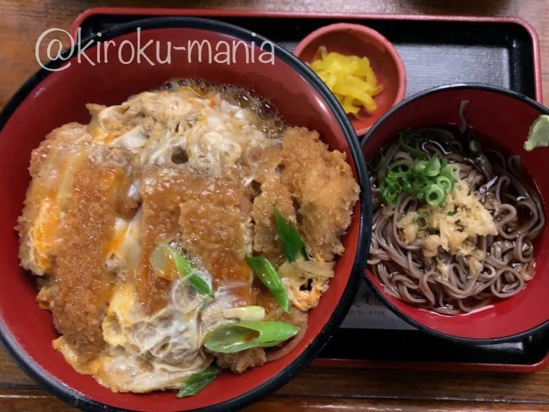 f:id:kiroku-mania:20210123090724j:plain