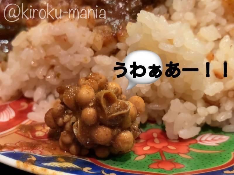 f:id:kiroku-mania:20210412234343j:plain