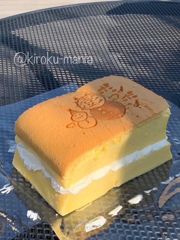 f:id:kiroku-mania:20210412235020j:plain